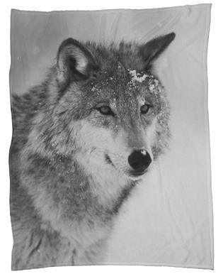 The Wolf Fleece Blanket