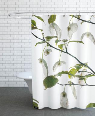 Flora - Taubenbaum