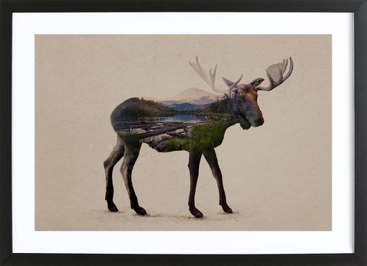 Moose -Bild mit Holzrahmen