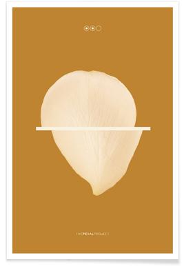 Petal Project No. 02 - Premium poster