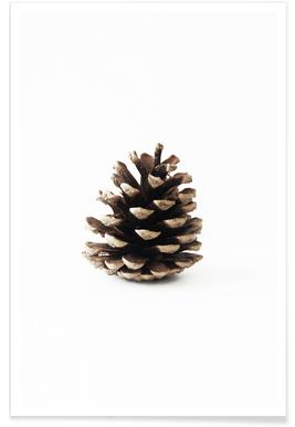 Pinecone N1 -Poster