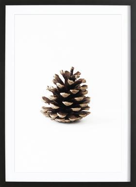 Pinecone N1 -Bild mit Holzrahmen