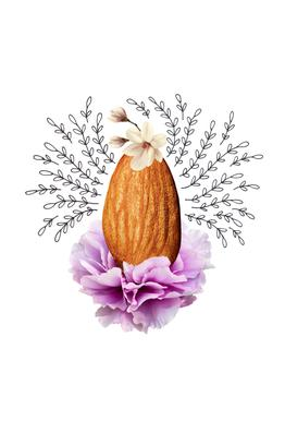 Almond Collage