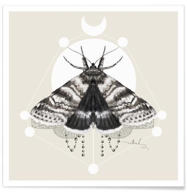 Moth -Poster