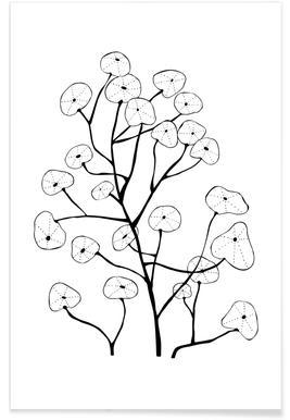 Kapuzinerkresse -Poster