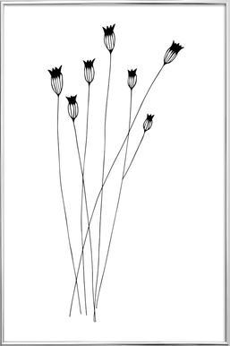 Kornblumen -Poster im Alurahmen