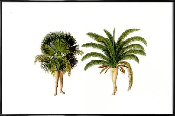 The Palms Framed Poster