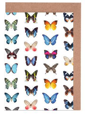 Colourful Butterflies wenskaartenset