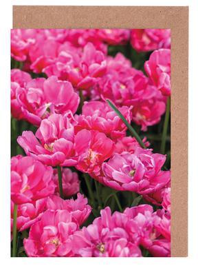 Pink Tulips Yellow