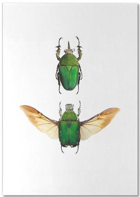 Insect 2 Notepad