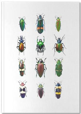 Insect 3 Notebook