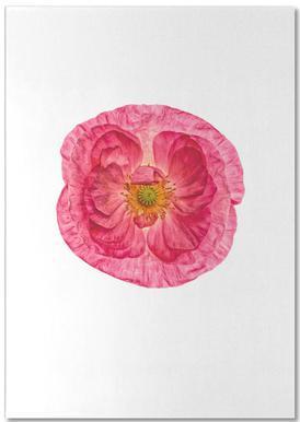 Poppy 4 -Notizblock