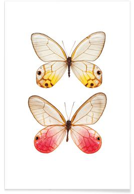Butterfly 4 - Premium Poster