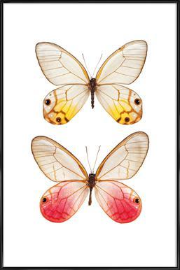 Butterfly 4 - Poster in kunststof lijst