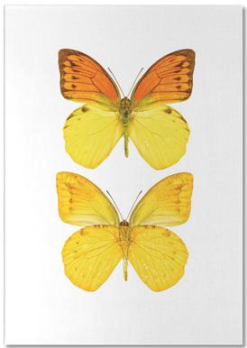 Butterfly 7 bloc-notes
