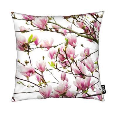Magnolia Pink 1