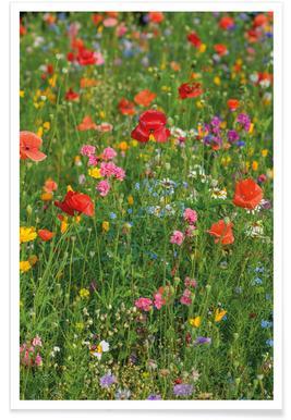 Wild Flowers Field 2 poster