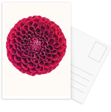 Flower 1 -Postkartenset
