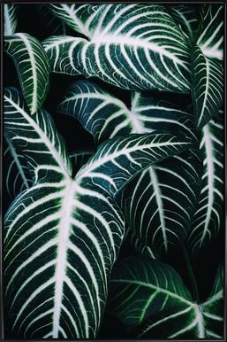 Jungle 2 -Bild mit Kunststoffrahmen