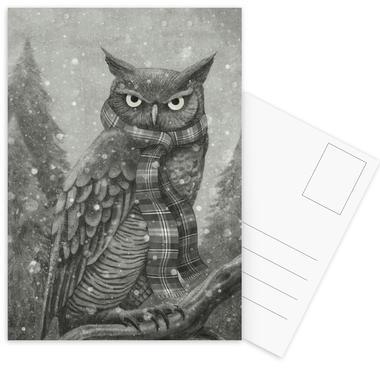 Winter Owl Postcard Set