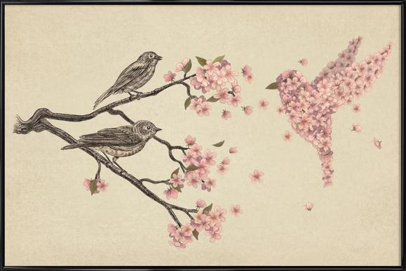 Blossom Bird -Bild mit Kunststoffrahmen
