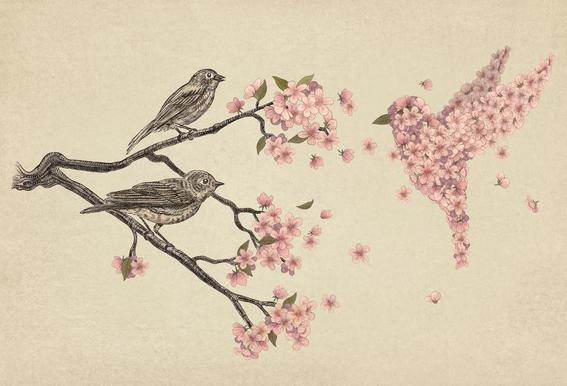 Blossom Bird