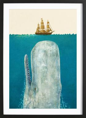 The Whale Framed Print