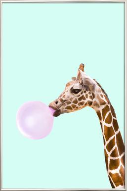 Giraffe -Poster im Alurahmen