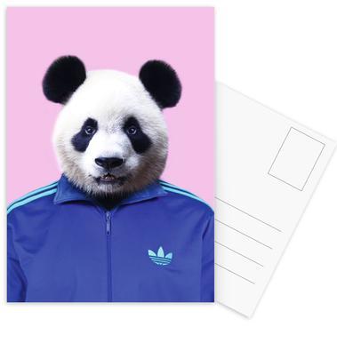 Panda Postcard Set