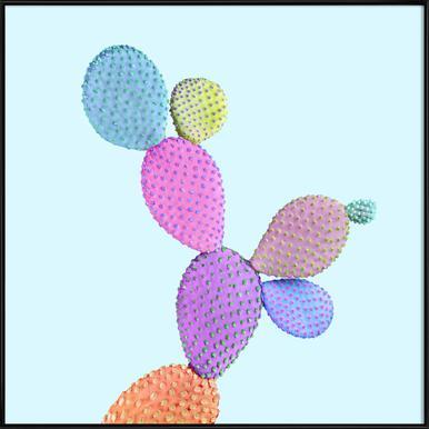 Color Cactus