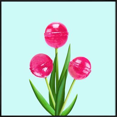 Lollipop Tulips 1 -Bild mit Kunststoffrahmen