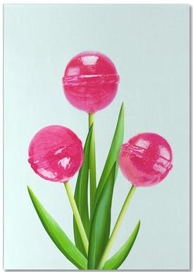 Lollipop Tulips 1 notitieblok