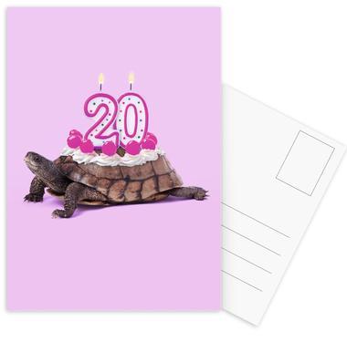 20 Turtle ansichtkaartenset