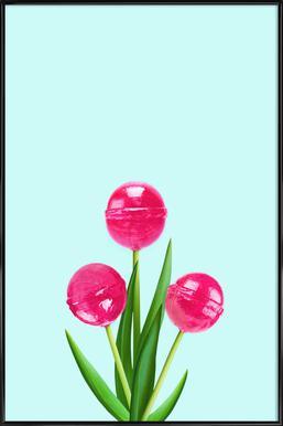 Lollipop Tulips 2