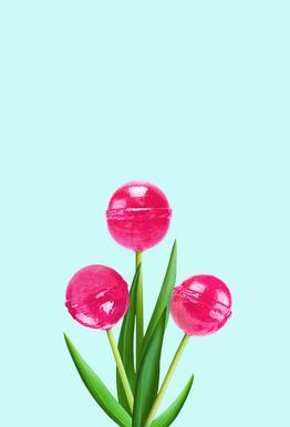 Lollipop Tulips 2 Acrylic Print
