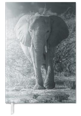 Elephant Walk agenda