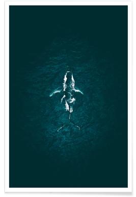 Humpback Breach -Poster