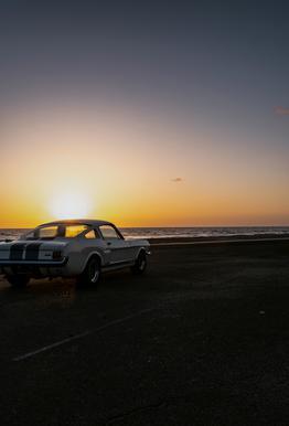 Sunset Mustang Aluminium Print