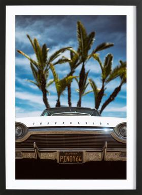 Tropic Thunderbird Framed Print