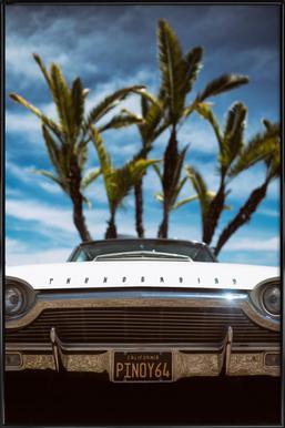 Tropic Thunderbird Framed Poster