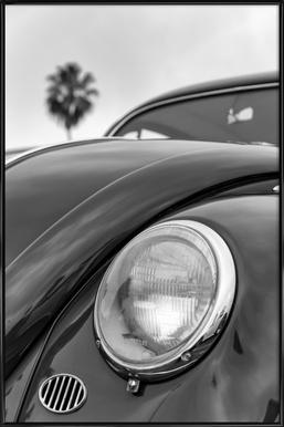 California Beetle Framed Poster