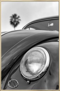 California Beetle -Poster im Alurahmen