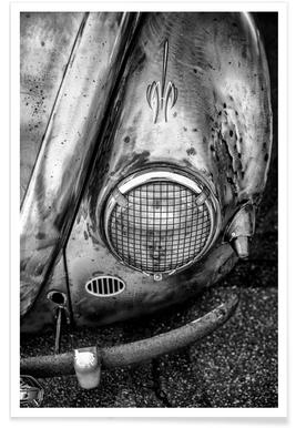 Silver Beetle -Poster