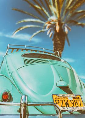 California Turquoise Canvas Print