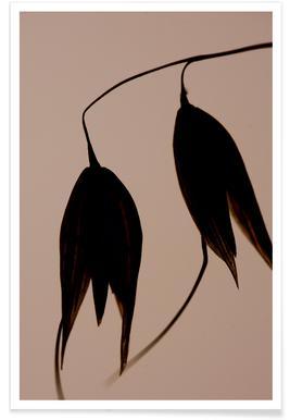 Aurion 3 - Jannick Boerlum - Premium Poster