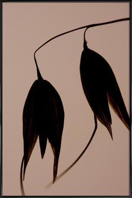 Aurion 3 - Jannick Boerlum - Poster in Standard Frame