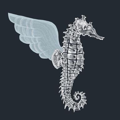 Pegasus -Leinwandbild