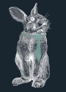 Fancy Rabbit Canvas Print