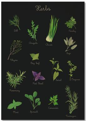Herbs Notebook
