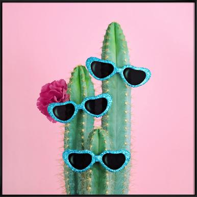 Cactus Sunglasses Framed Poster